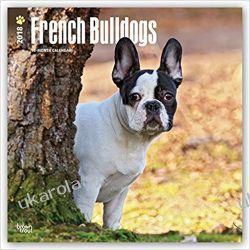 Kalendarz Bulldog Francuski French Bulldogs 2018 Wall Calendar