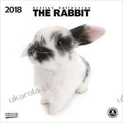 Kalendarz Króliki The Rabbit 2018 Calendar Książki i Komiksy