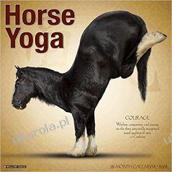 Kalendarz Konie Horse Yoga 2018 Calendar Pozostałe