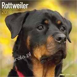 Kalendarz 2018 Rottweiler Calendar