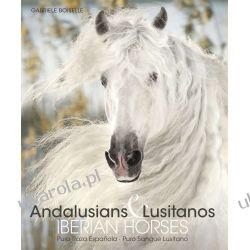 Andalusians Lusitanos Boiselle Gabriele Konie Pozostałe