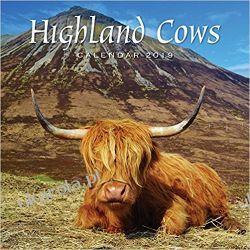 Kalendarz 2019 Scotland Calendar - Highland Cows