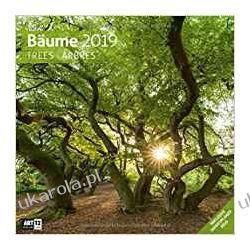 Kalendarz Drzewa 2019 Trees Calendar