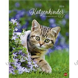 Kalendarz Kotki 2019 Kittens Calendar