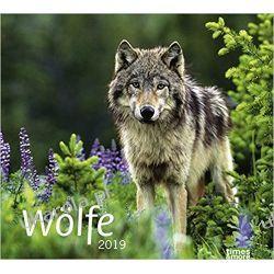 Kalendarz Wilki 2019 Wolves Calendar