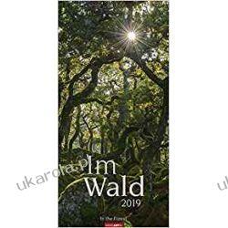 Kalendarz Las 2019 Forest Calendar Książki i Komiksy