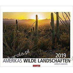 Kalendarz Dzikie krajobrazy Ameryki 2019 American Landscapes Calendar Książki i Komiksy