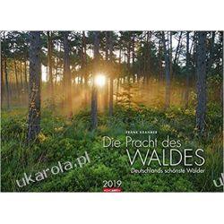Kalendarz Niemieckie Lasy 2019 Forests Woods Calendar Książki i Komiksy