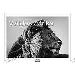 Kalendarz Dzika Afryka Wild Africa 2019 Calendar Książki i Komiksy