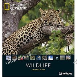 Kalendarz Dzikie Życie National Geographic Wildlife 2019 Calendar