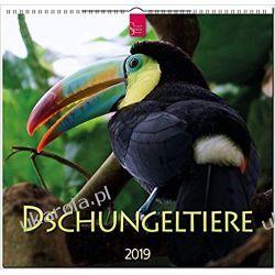 Kalendarz Zwierzęta w dżungli Jungle Animals 2019 Calendar Kalendarze ścienne