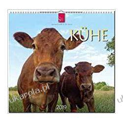 Kalendarz Krowy Cows 2019 Calendar