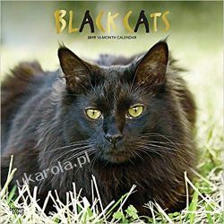 Kalendarz Czarne Koty Black Cats 2019 Square Wall Calendar Kalendarze ścienne