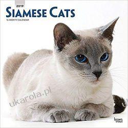 Kalendarz Koty Syjamskie Siamese Cats 2019 Square Wall Calendar Pozostałe