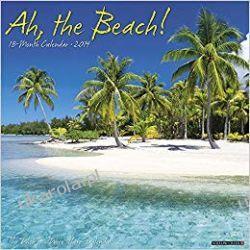 Kalendarz Ah the Beach! 2019 Calendar plaża