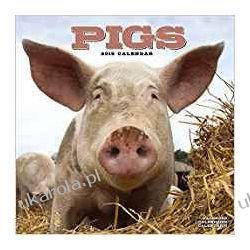 Kalendarz Świnie Pigs Calendar 2019