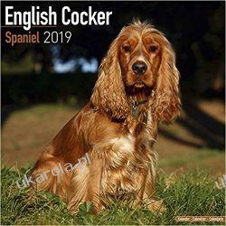 Kalendarz English Cocker Spaniel Calendar 2019