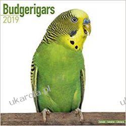 Kalendarz Papugi Faliste Budgerigars Calendar 2019