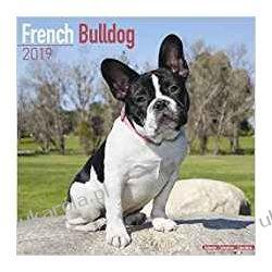 Kalendarz Buldog Francuski French Bulldog Calendar 2019