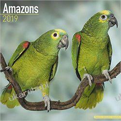 Kalendarz Papugi Amazonki Amazons Calendar 2019