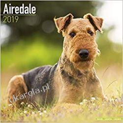 Kalendarz Airedale Calendar 2019 Pozostałe