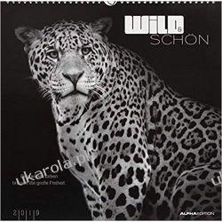 Kalendarz Wild & beautiful 2019 Calendar Dzikie Zwierzęta