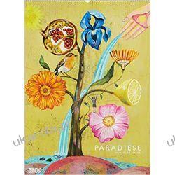 Kalendarz Paradiese 2019 Calendar sztuka malarstwo Olaf Hajek Lotnictwo
