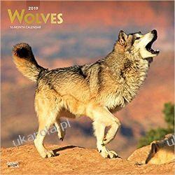 Kalendarz Wilki Wolves 2019 Square Wall Calendar