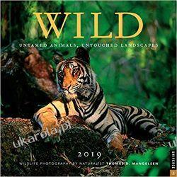 Kalendarz dzikie zwierzęta Wild 2019 Square Wall Calendar  Kalendarze ścienne