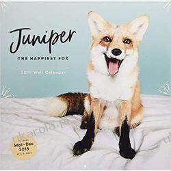Kalendarz Lis Juniper the Happiest Fox 2019 Wall Calendar