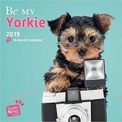 Kalendarz Myrna Be my Yorkie - Yorkshire Terrier 2019 Calendar jorki Lotnictwo