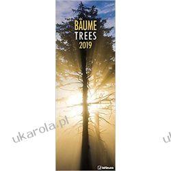 Kalendarz Drzewa 2019 Trees King Size Wall Calendar - teNeues - 34 x 98cm las