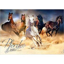Horses Calendar 2020 konie Kalendarze książkowe