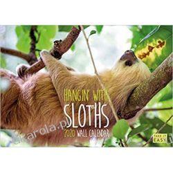 Hangin with Sloths 2020 Calendar The funny sloths calendar leniwce Książki i Komiksy