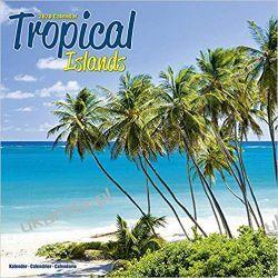 Kalendarz Tropical Island Calendar 2020 tropikalne wyspy Książki i Komiksy