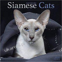 Kalendarz Siamese Cats Calendar 2020 30x30 cm koty syjamskie Książki i Komiksy
