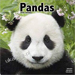 Kalendarz Pandas Calendar 2020 30x30 cm pandy Książki i Komiksy