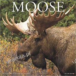 Kalendarz Moose 2020 Calendar łosie