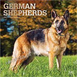 Kalendarz German Shepherds 2020 Square Wall Calendar owczarek niemiecki Pozostałe