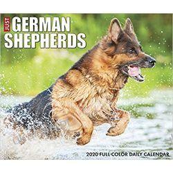 Just German Shepherds 2020 Calendar box owczarki niemieckie Pozostałe