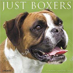 Kalendarz z psami Just Boxers 2020 Wall Calendar Kalendarze ścienne