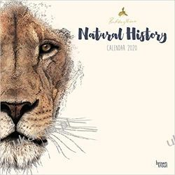Natural History by Ben Rothery 2020 Square Wall Calendar Marynarka Wojenna