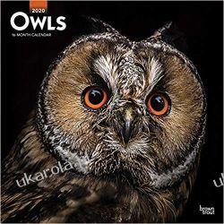 Owls 2020 Square Wall Calendar sowy Pozostałe
