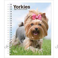 Yorkshire Terriers 2020 Diary Calendar