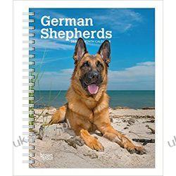 German Shepherds 2020 Diary Calendar