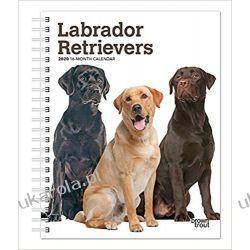 Labrador Retrievers 2020 Diary Calendar