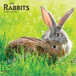 Rabbits 2020 Square Wall Calendar Samochody