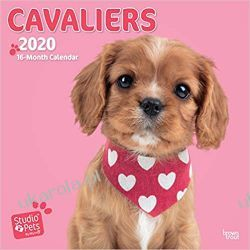 Cavaliers 2020 Square Wall Calendar (Studio Pets) by Myrna