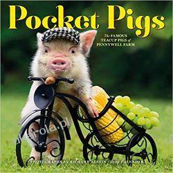 Pocket Pigs Wall Calendar 2020 świnki