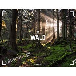 Kalendarz Las Wald - Ackermann Gallery 2020 Calendar